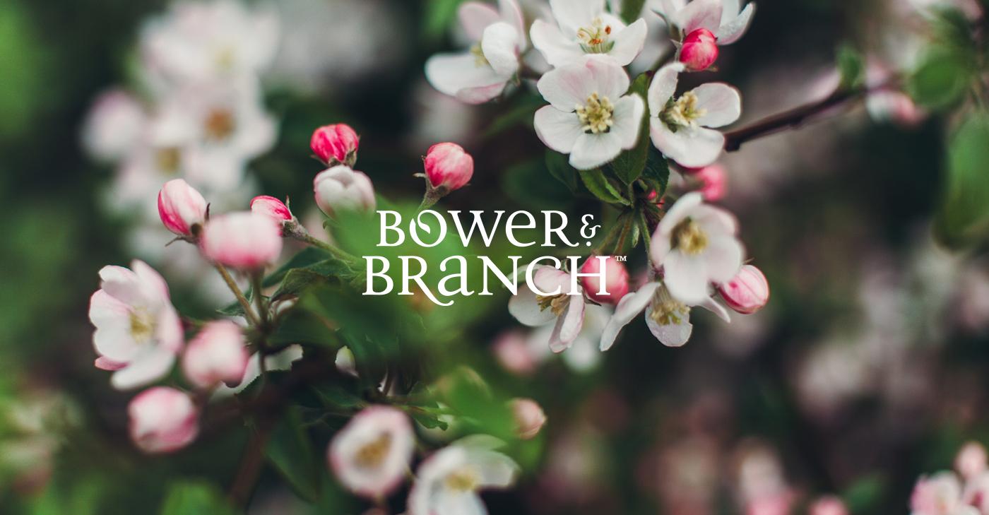bower-branch-1.jpg