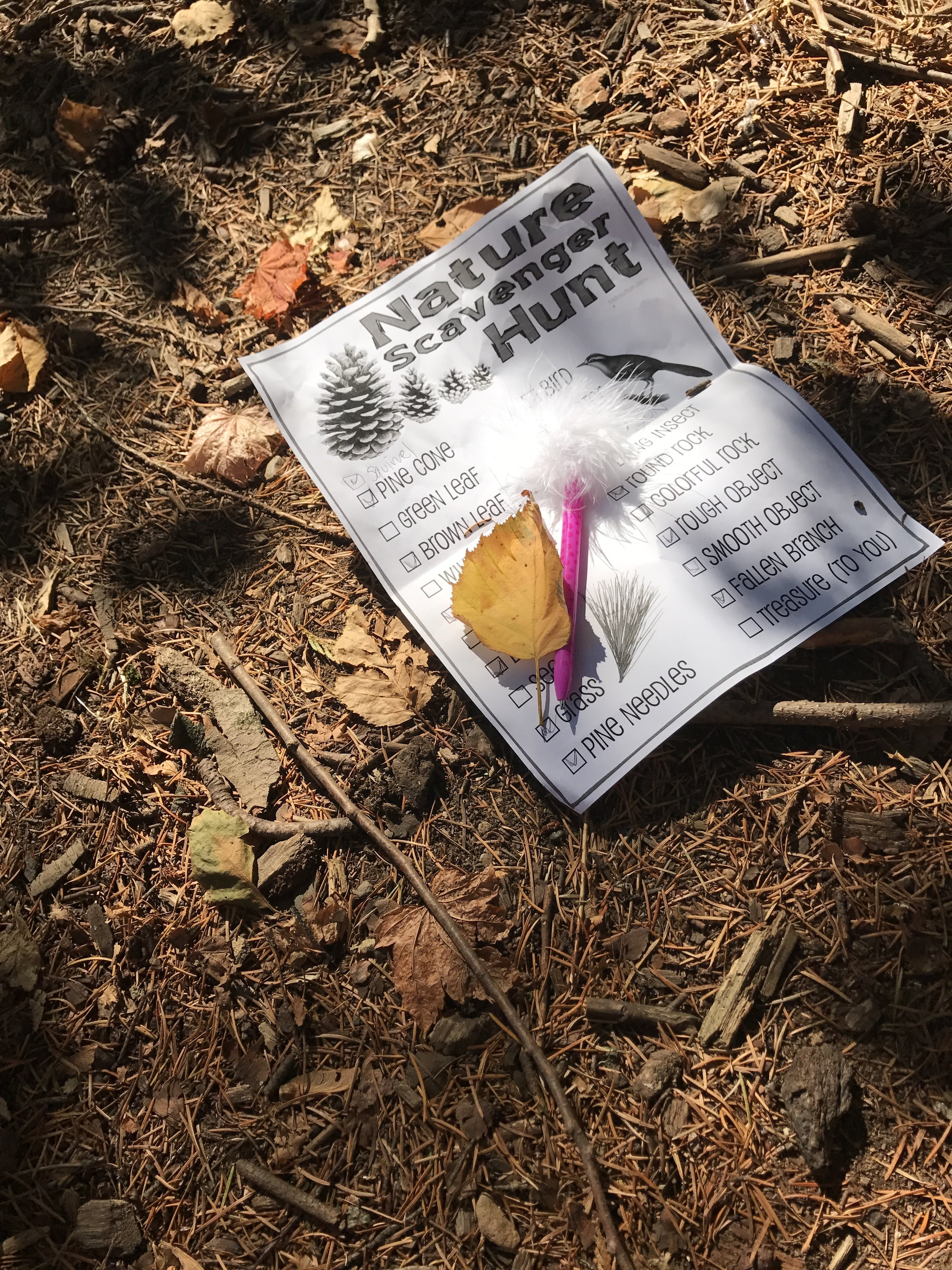 Scavenger hunts at the local parks are fabulous in any season. I just googled Fall Scavenger Hunt and a bunch of free printables popped up. Obviously you can create your own, there are also great pictograph options for pre-readers.