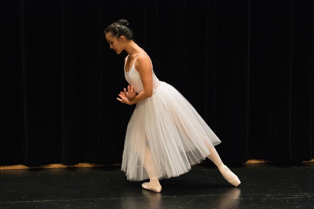 Karin Hobby Dance Academy — Adult Dance Classes