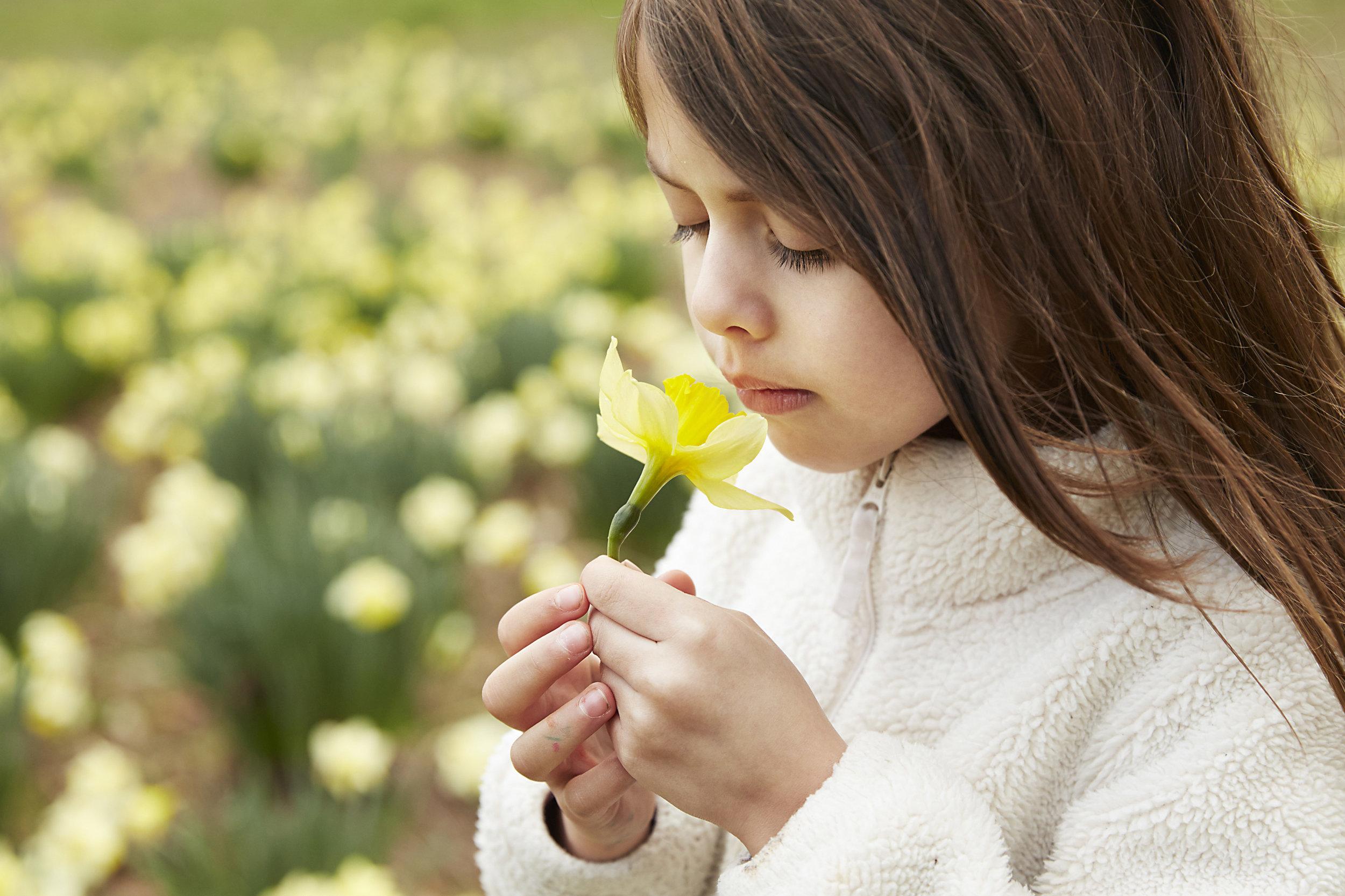 daffodils martinez 2016_ 17.jpg