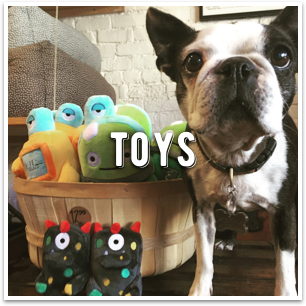 The largest selection of fun dog toys in the bay area. Check out Dogville in San Anselmo!