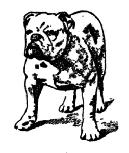 vintage-dogs_king-charles.png