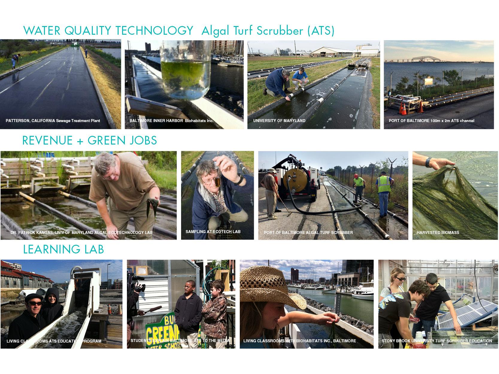 green jobs.jpg