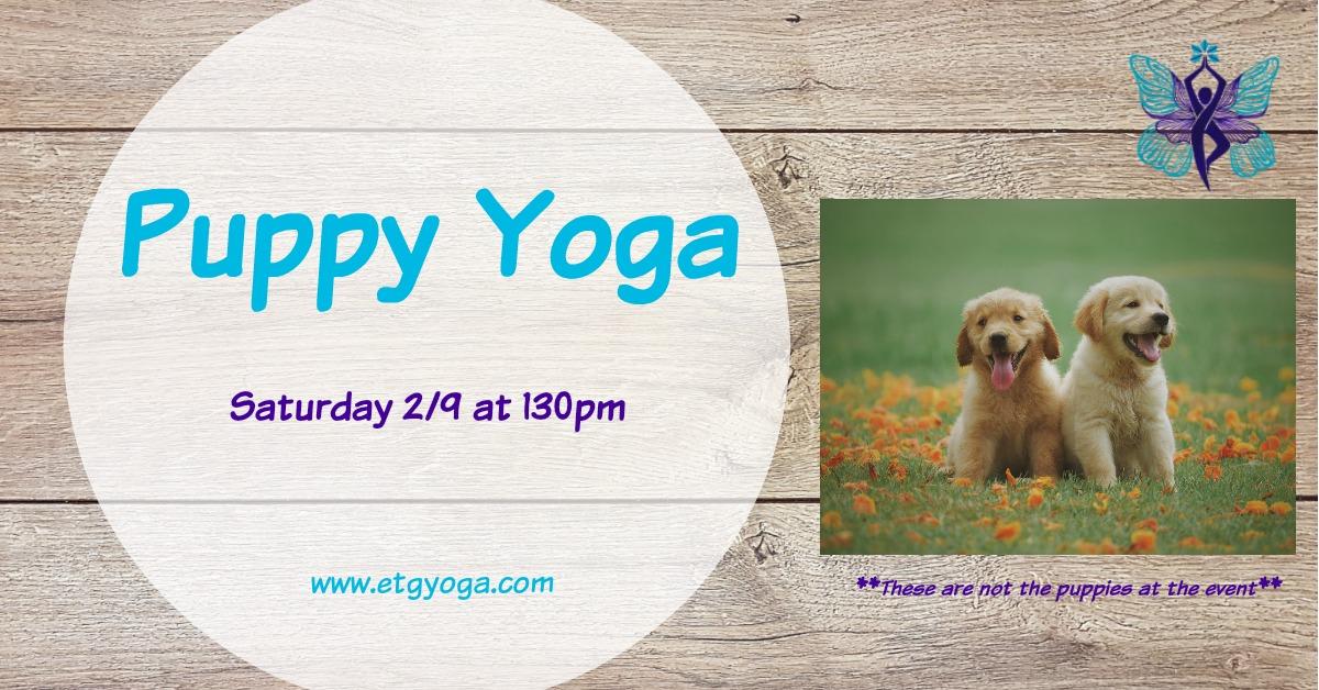 Puppy Yoga 2-9.jpg