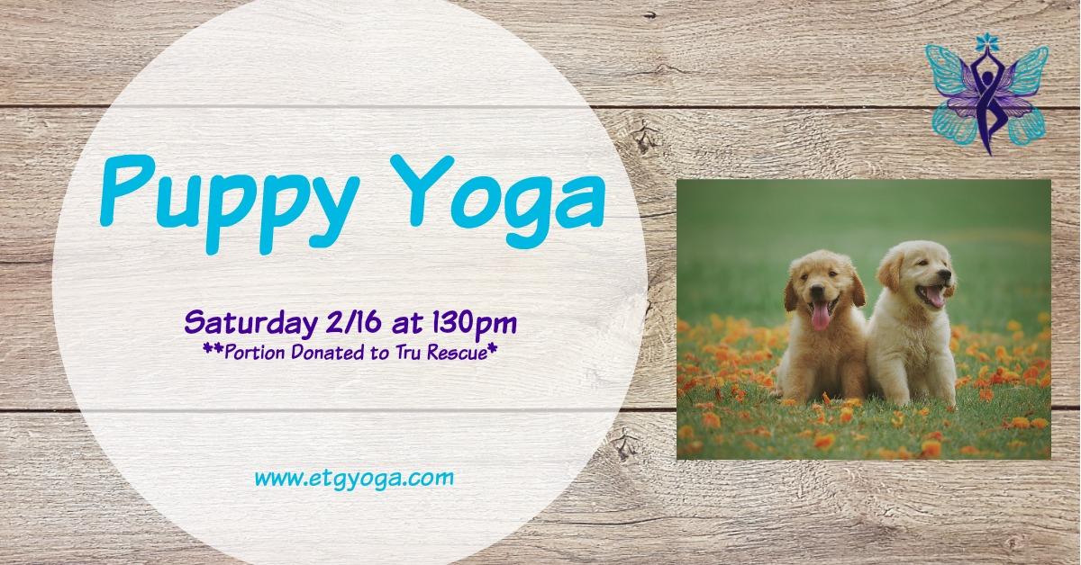 Puppy Yoga 2-16.jpg