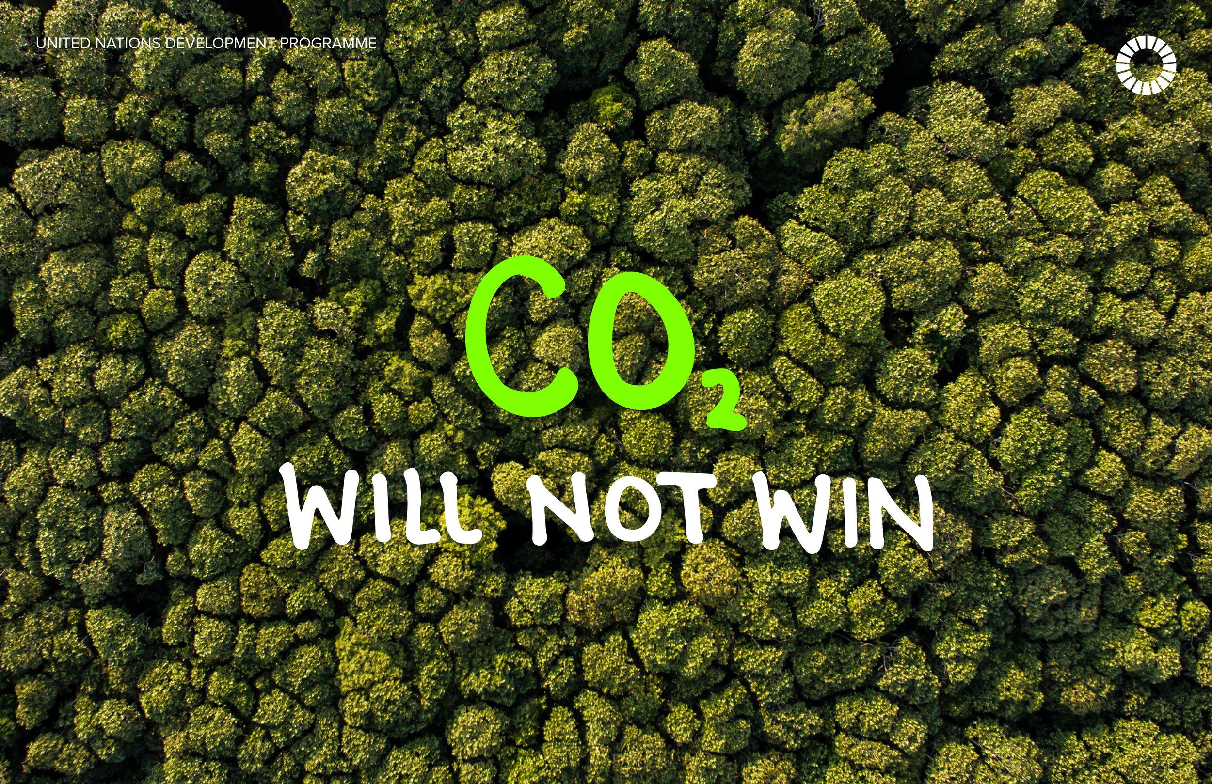 2. CO2.jpg