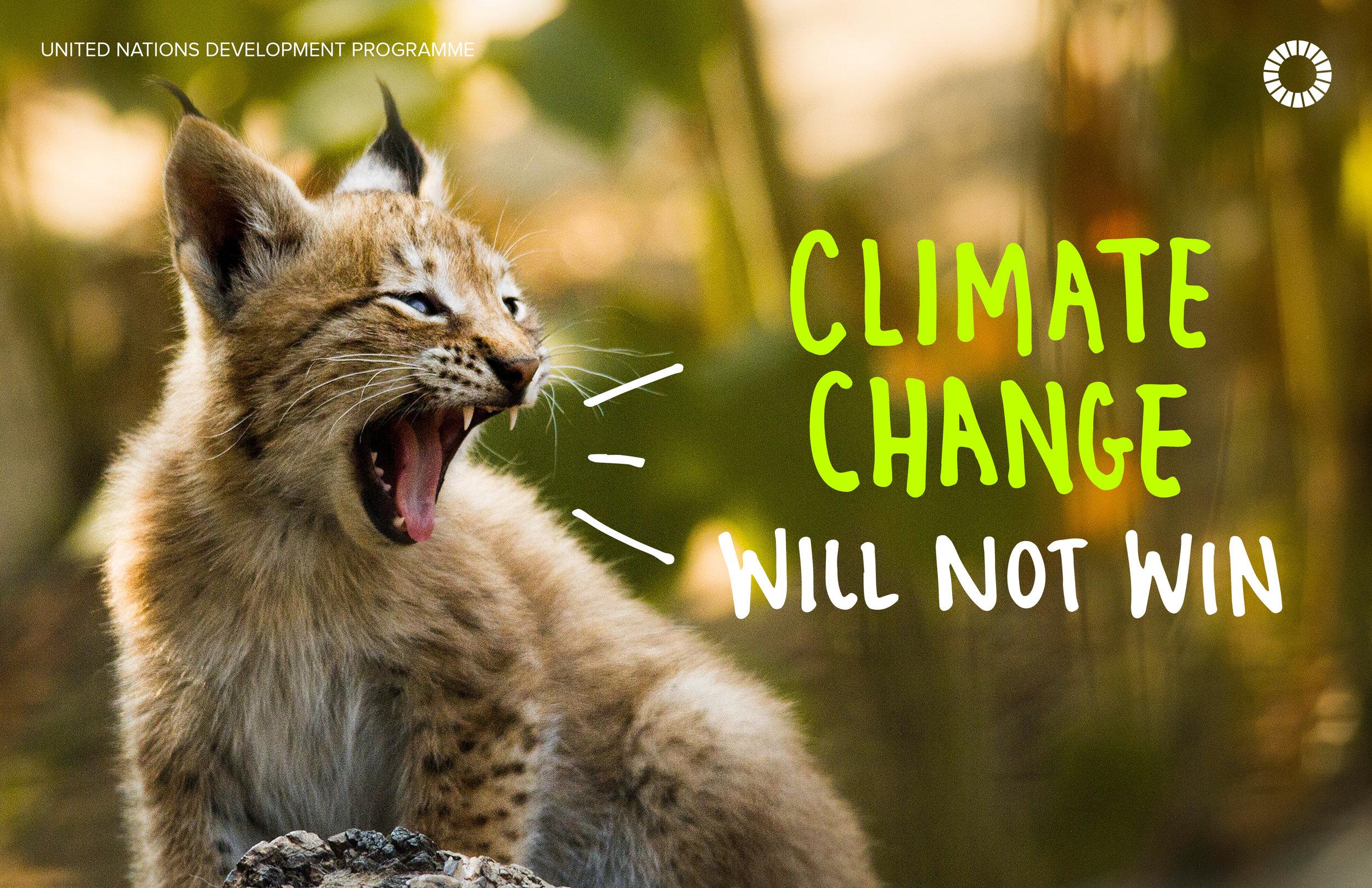 12. Climate change.jpg