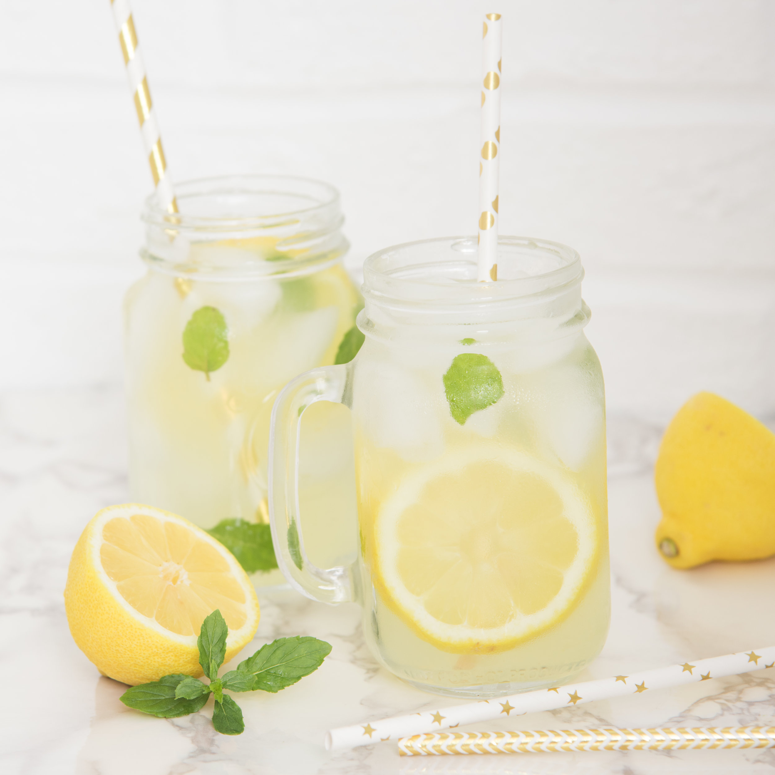 LemonadeDayFreebie_ElenaSloup.jpg