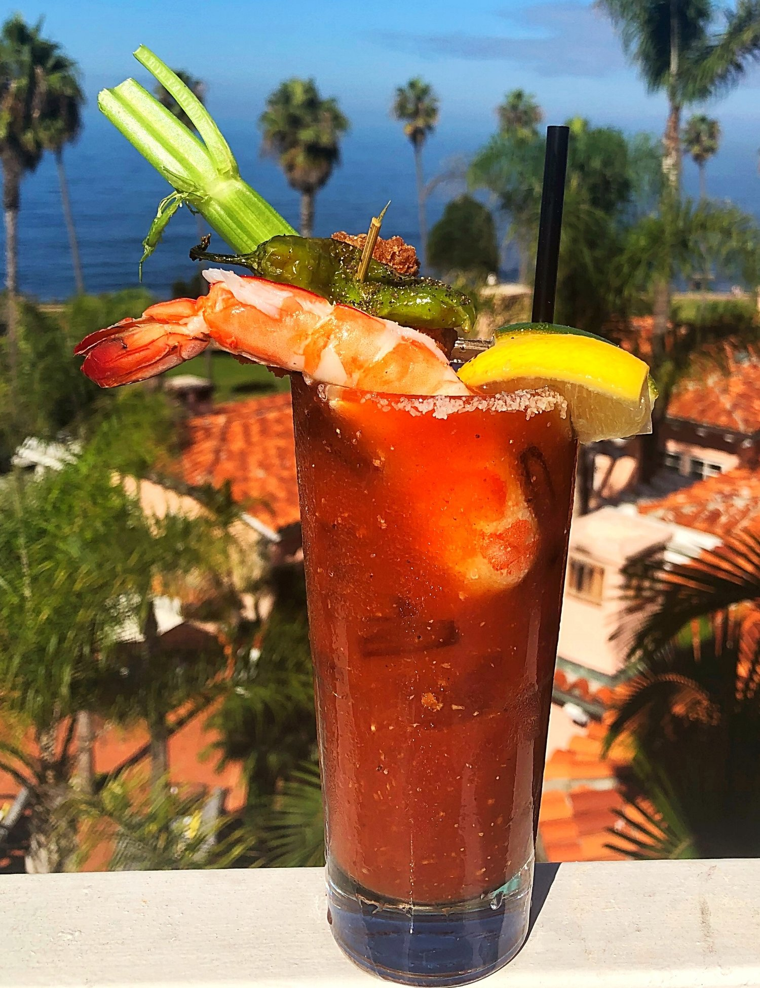 la+valencia+hotel+best+bloody+marys+in+san+diego boody mary obsessed+in+the+united+states+brunch+beach+breeze+bloodys+la+jolla.jpg