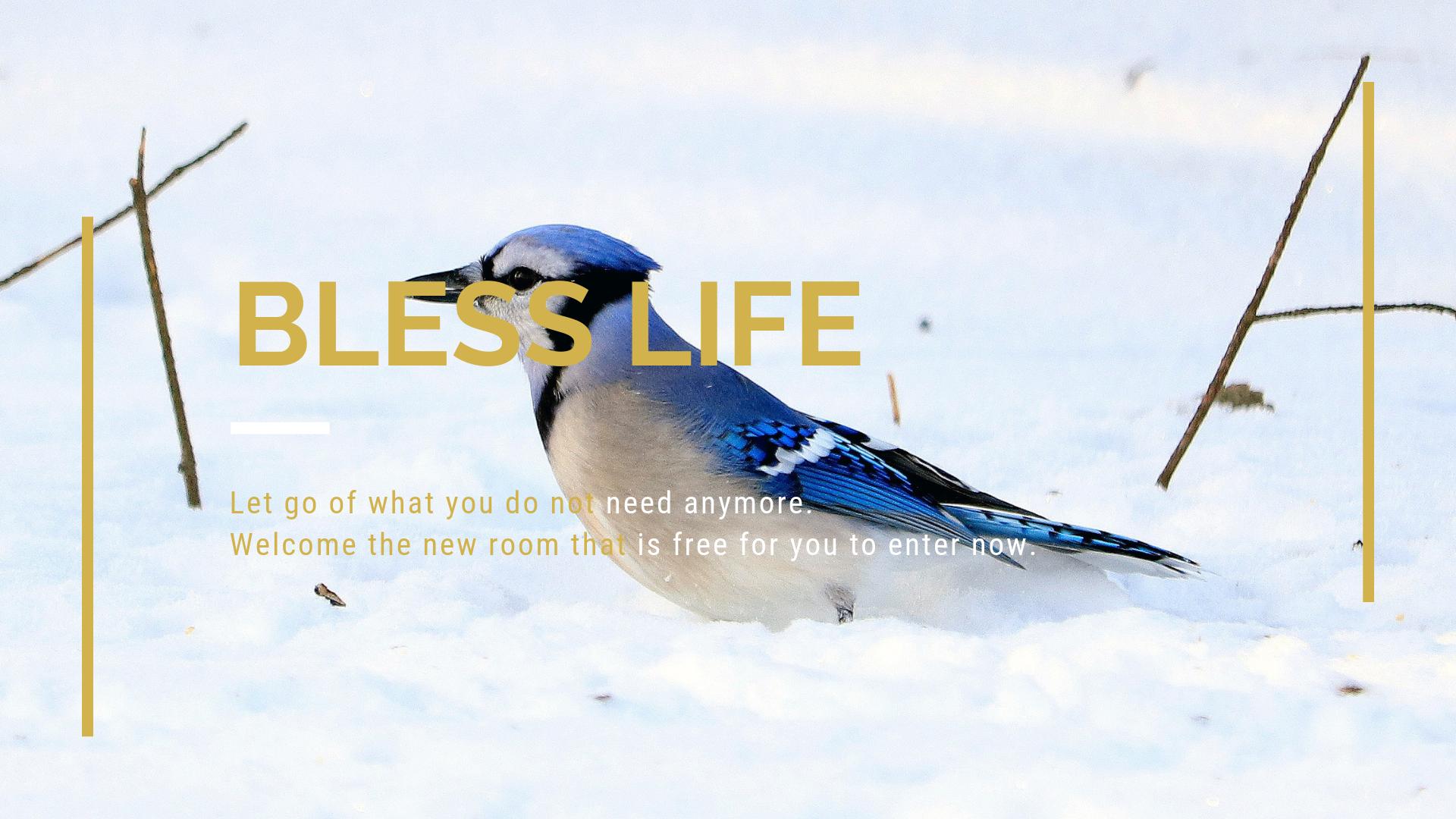 Verena Fay Blog - Bless Life.png