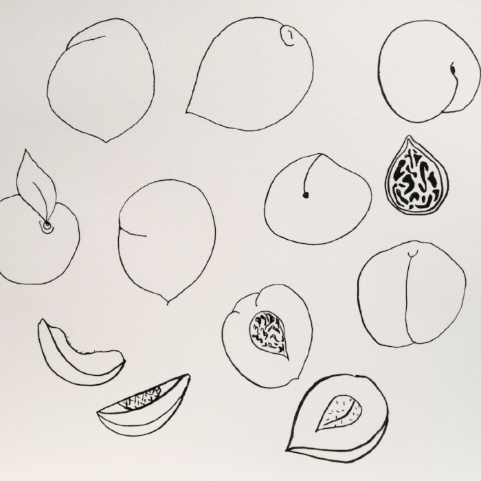 a rough sketch of peaches