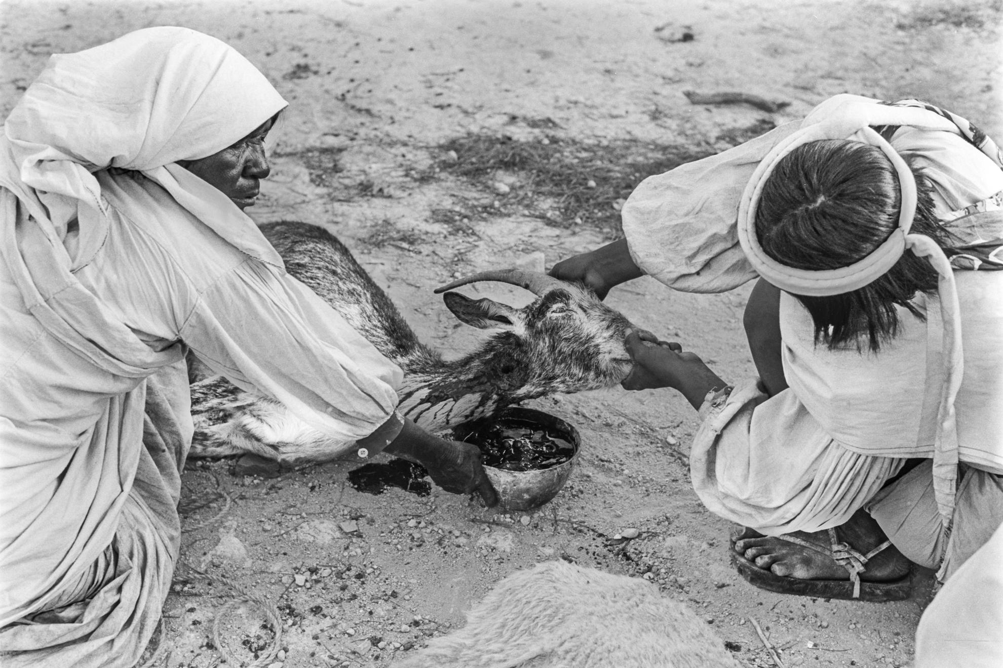 Sacrificing a goat for Ramali