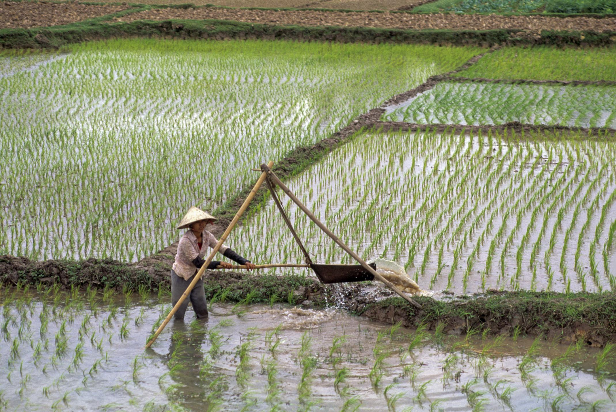 Halong, Vietnam. 1993