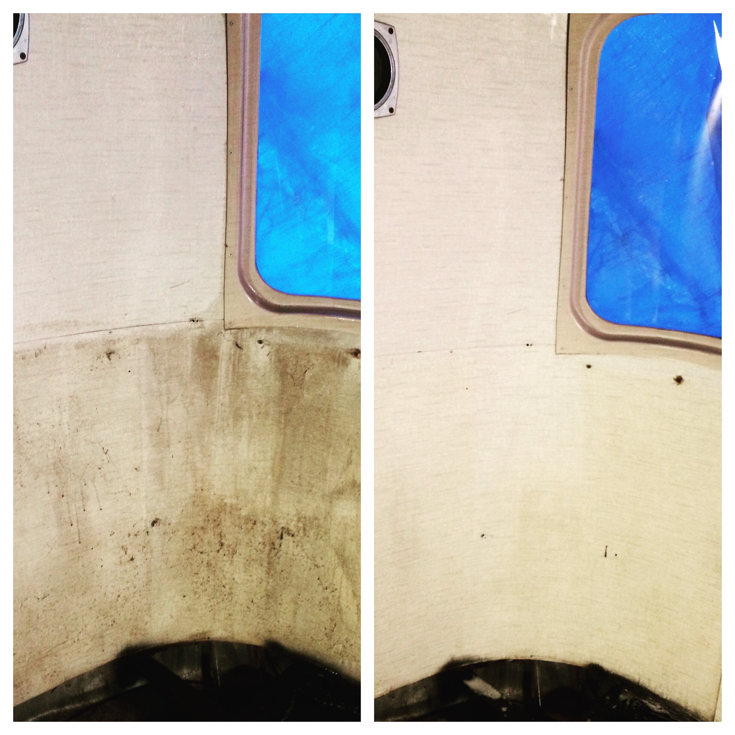 Mold be-gone! Citrus solvent does the trick (and lots of water and scrubbing!)