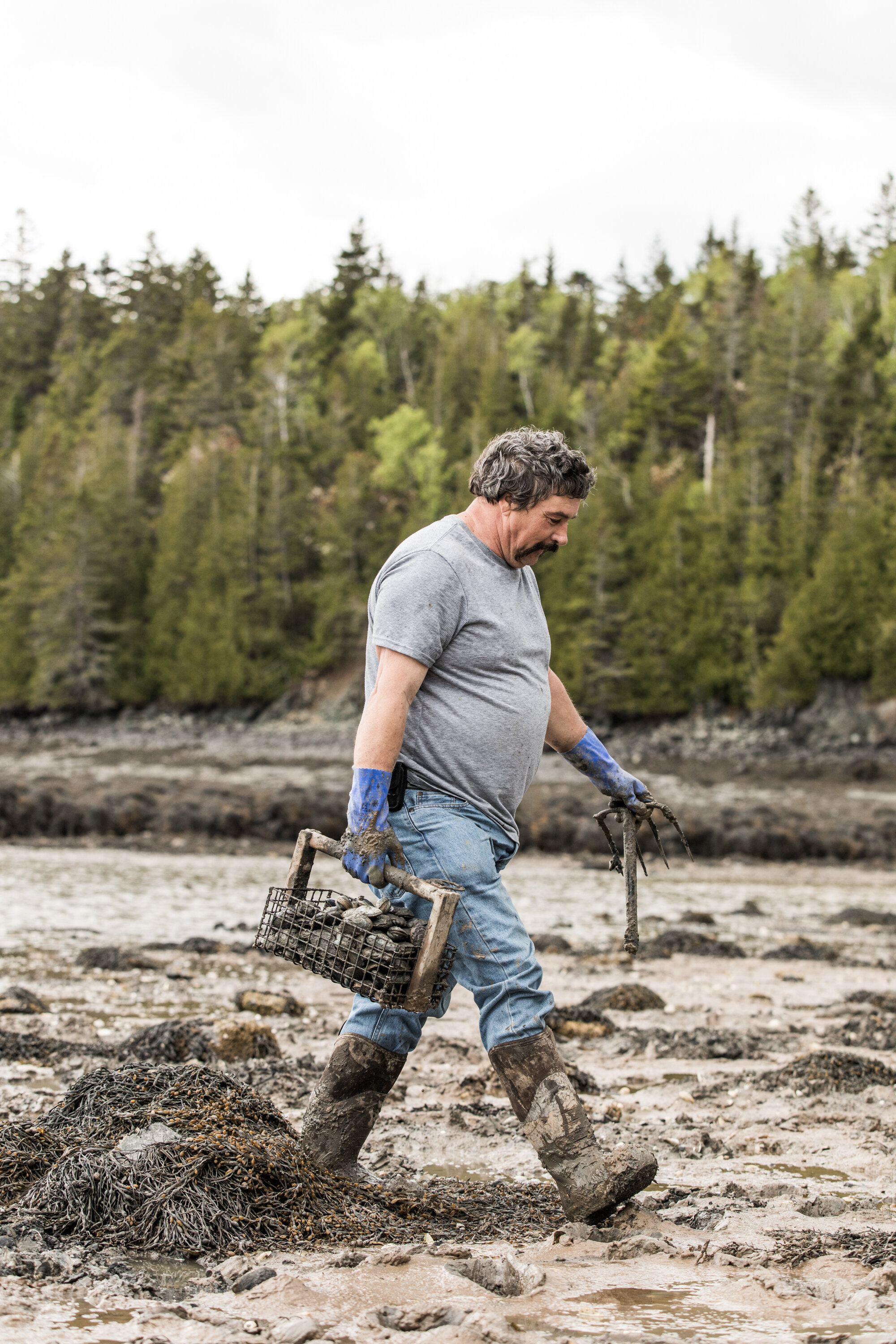 "Dave Brown, Clamming in North Lubec    ""I always go back to digging clams… You're your own boss, there's nobody to bother you. Of course, the hours change, the tide changes an hour a day so as the set tides it gets later and later in the day, right?    I started doing clams in Canada but I started sea urchins over here. Back then I was tending divers… you could pick your days, you didn't have to go because you could go every day. You have cold, sub-zero, no you didn't go. Gave a lot of wind? You didn't have to go, but now you do. Around here there's no safe harbor, we don't have government wharfs like they have in Campobello, we don't have big wharfs to tie to like in Bar Harbor and places.. We have to get in a little boat and get out to our big boat. If the wind's blowing it can be dangerous, people have lost their lives doing it. The state says this is the day you go, you try to get to your boat."""
