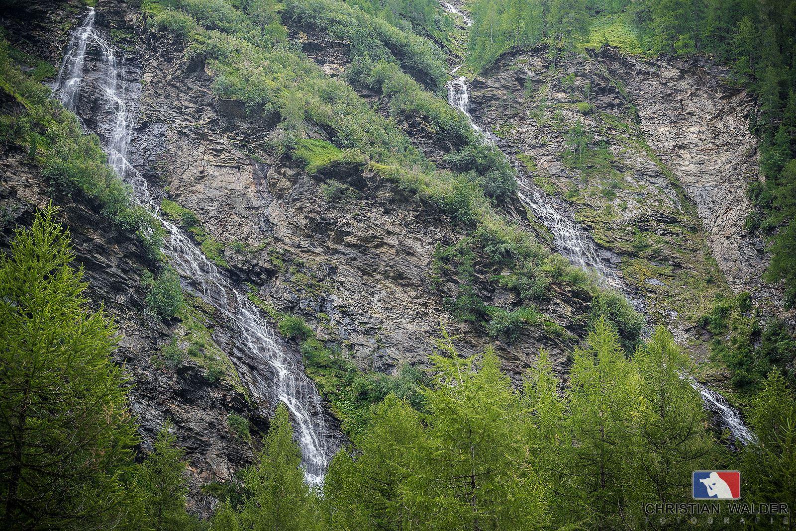 nature_2.jpg