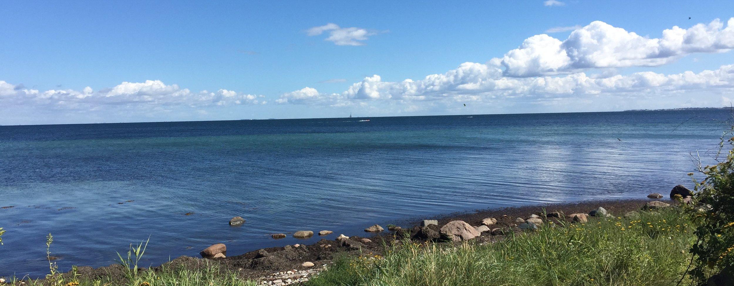 Dagsmøde på Vejrø med udsigt til mark og hav.jpg