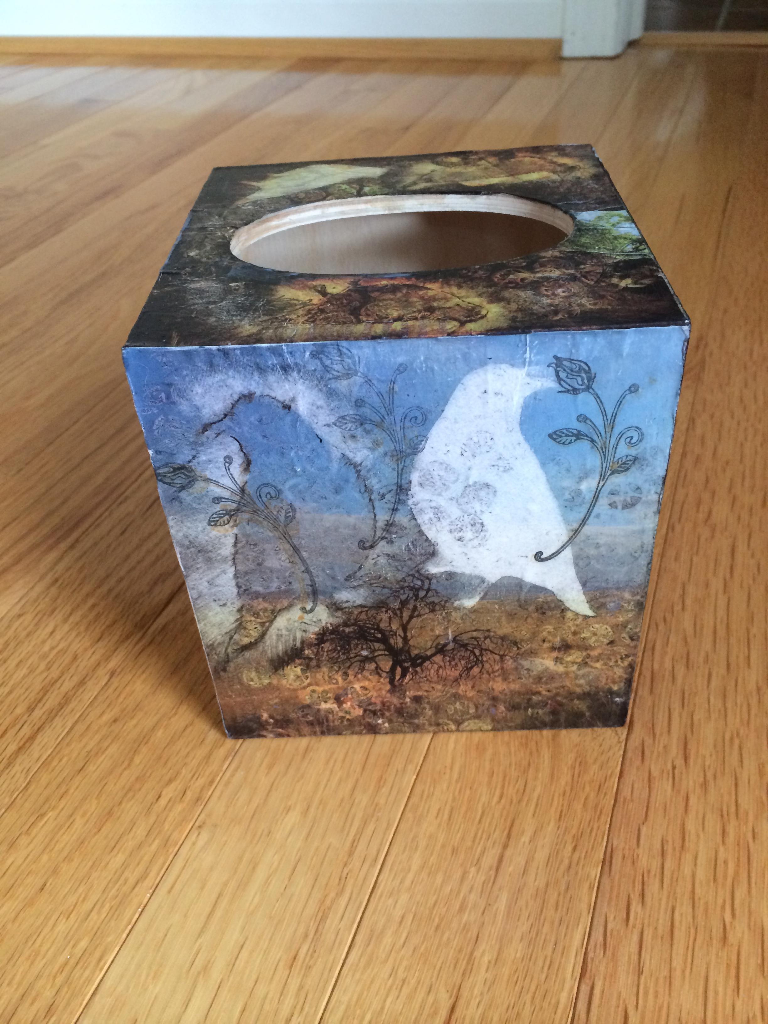 """Ellen Horovitz- """"Tissue Box"""""""