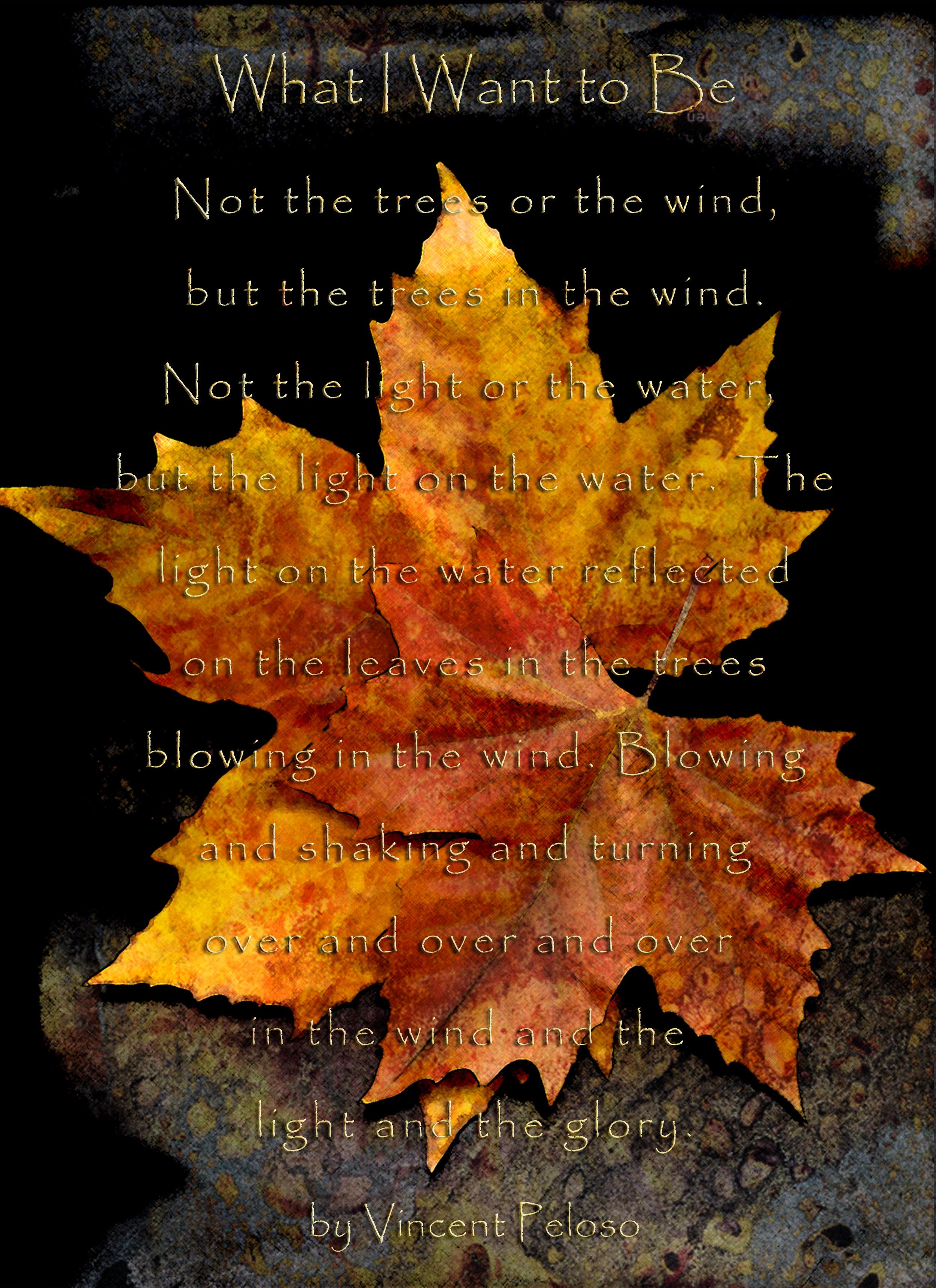 Autumn Leaves Vincent Peloso Poem- Bosha Struve