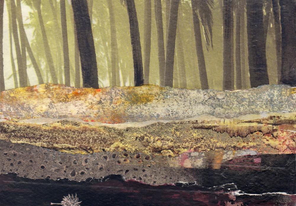 Misty Moist Swamp