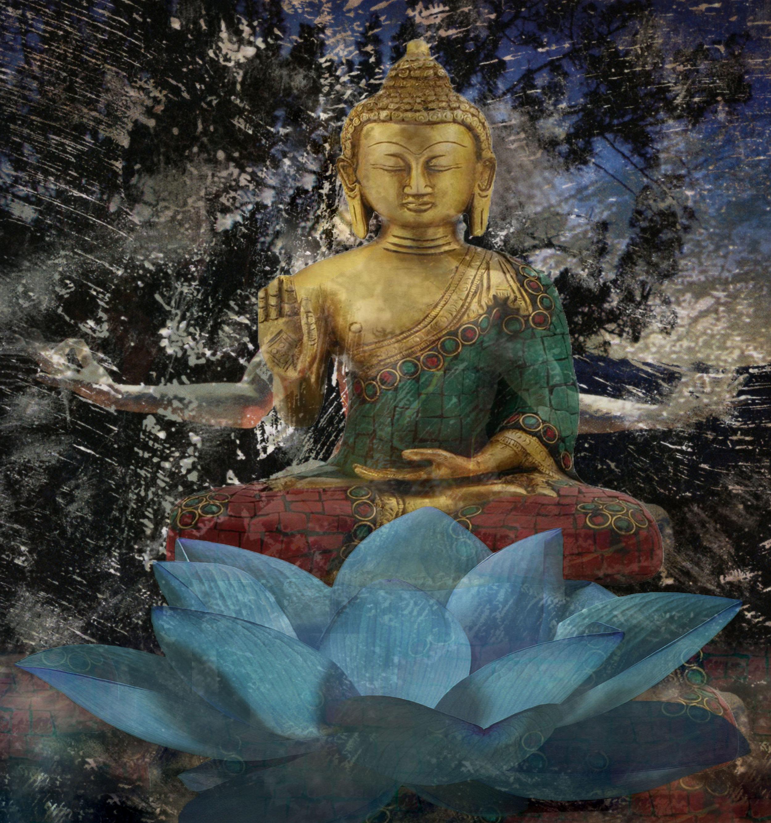 Buddah Cosmos