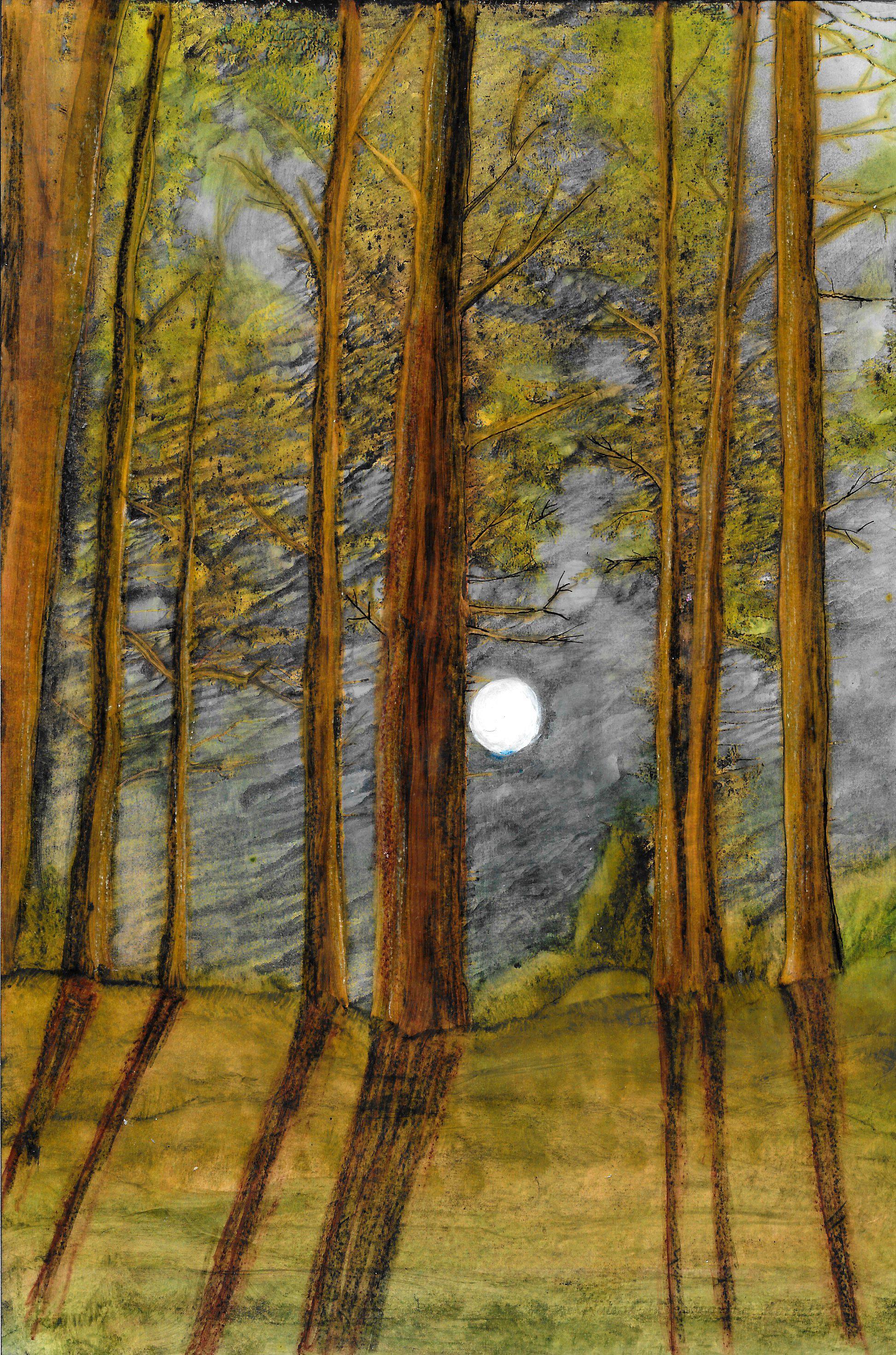 Citrasolv Full Moon in Forest