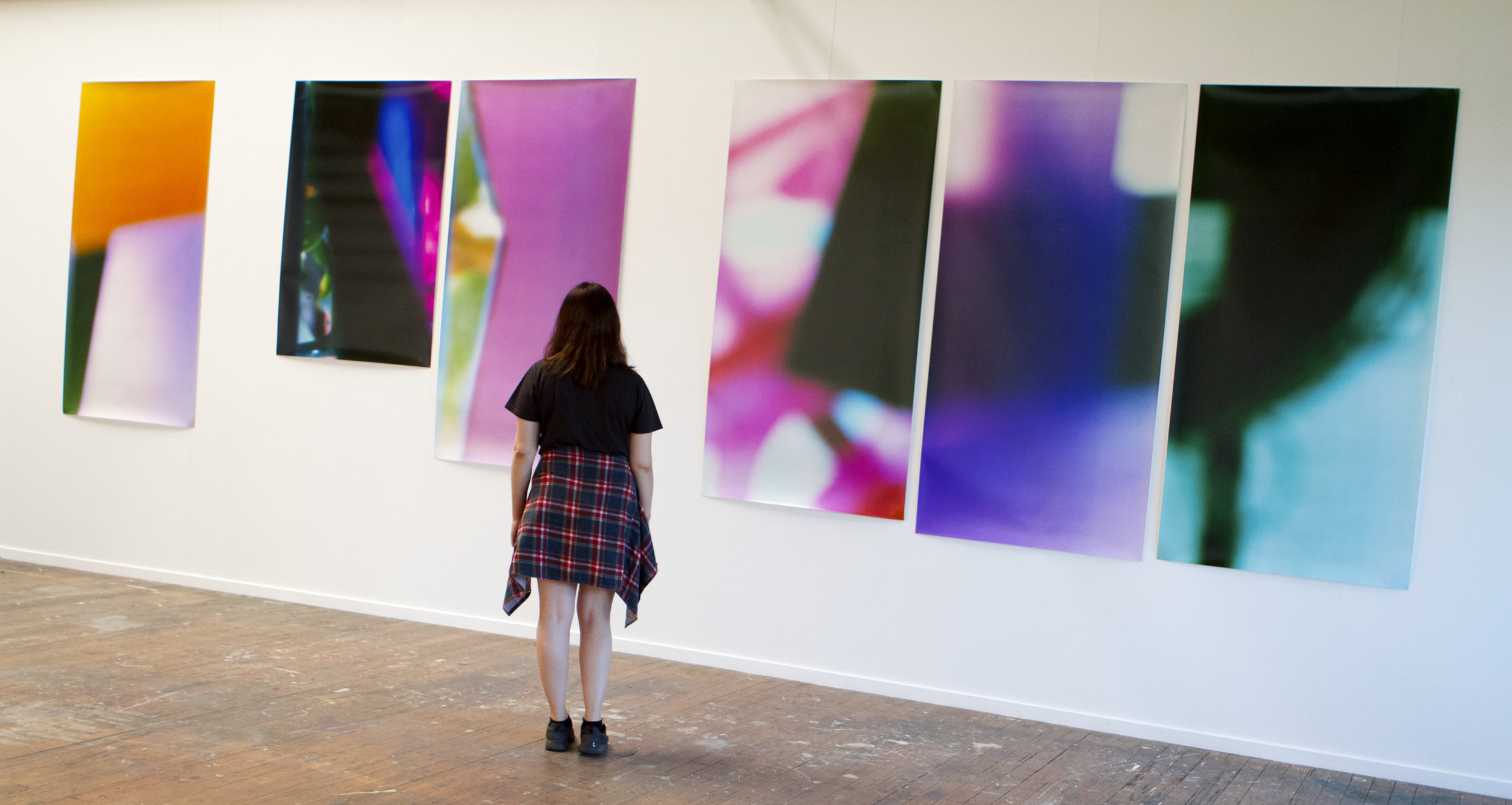 Victorian College of the Arts Graduate Exhibition, 2015