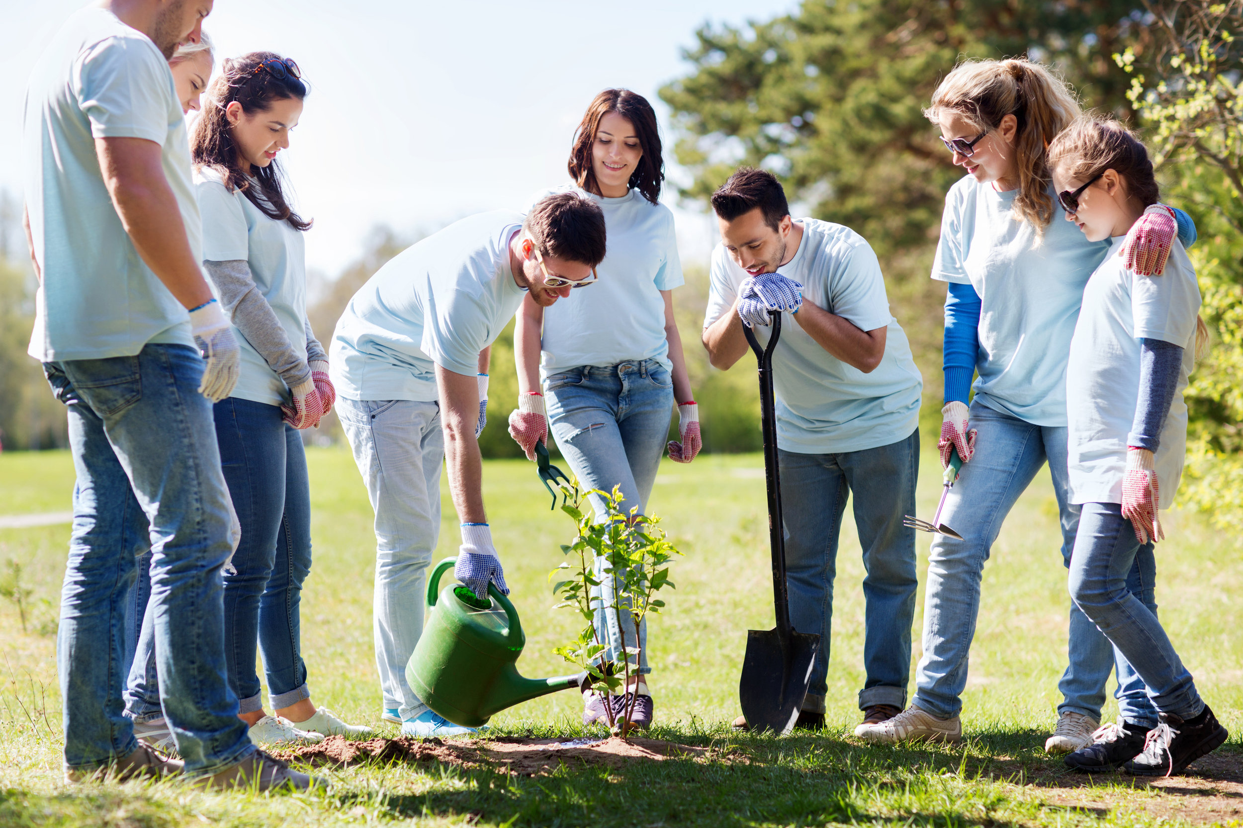 Adults planting tree.jpg