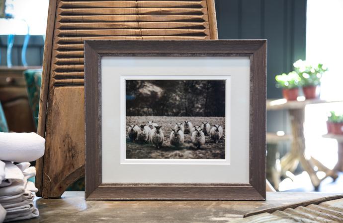 Shetland - Medium Musket Grey Silver Fleece