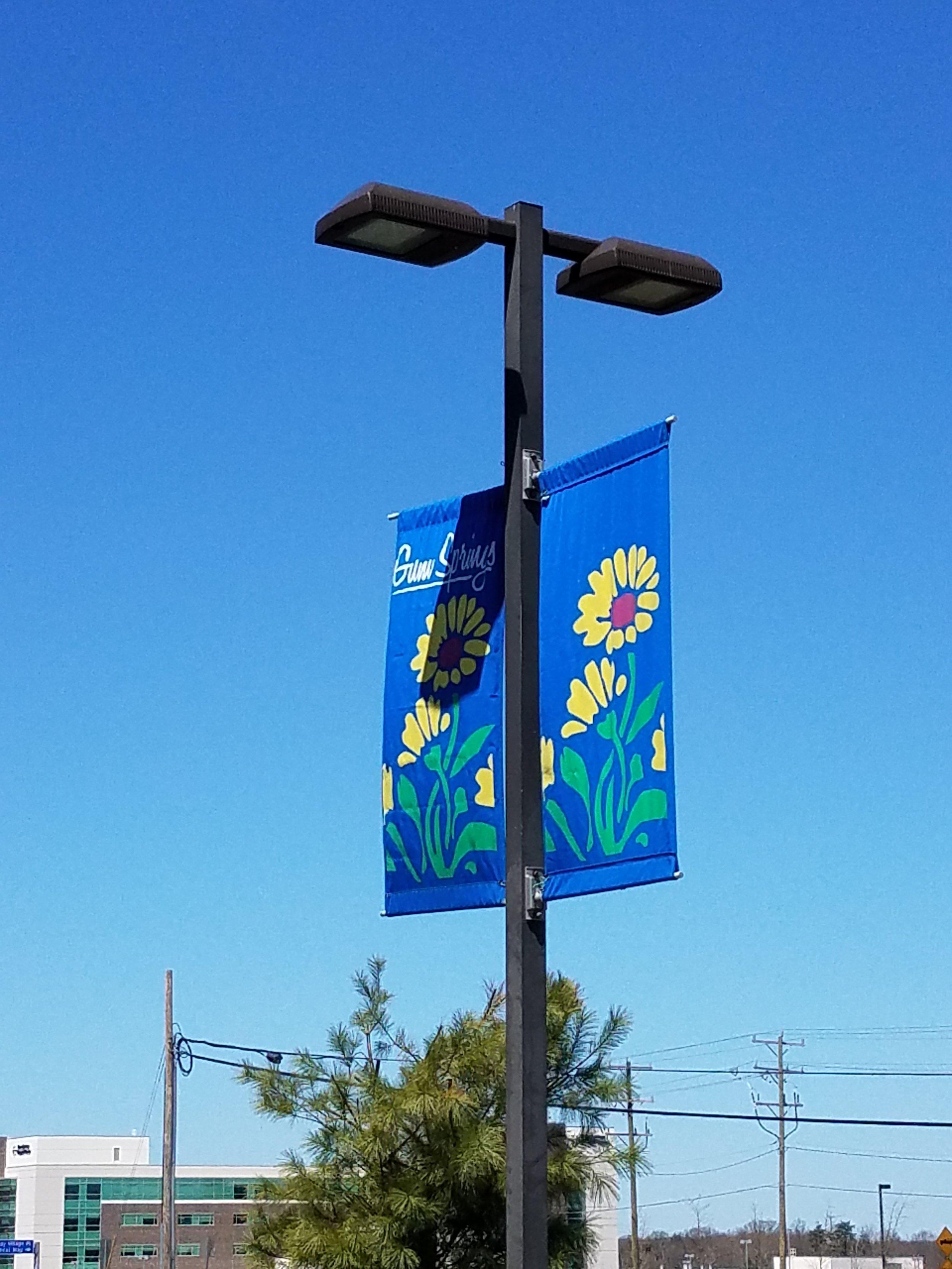 Pole Mount Double Banner
