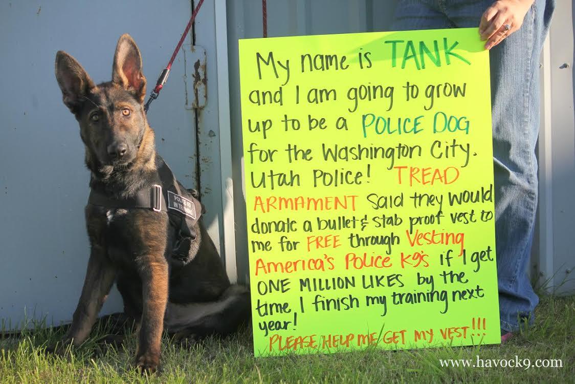 Tank Washington City Police