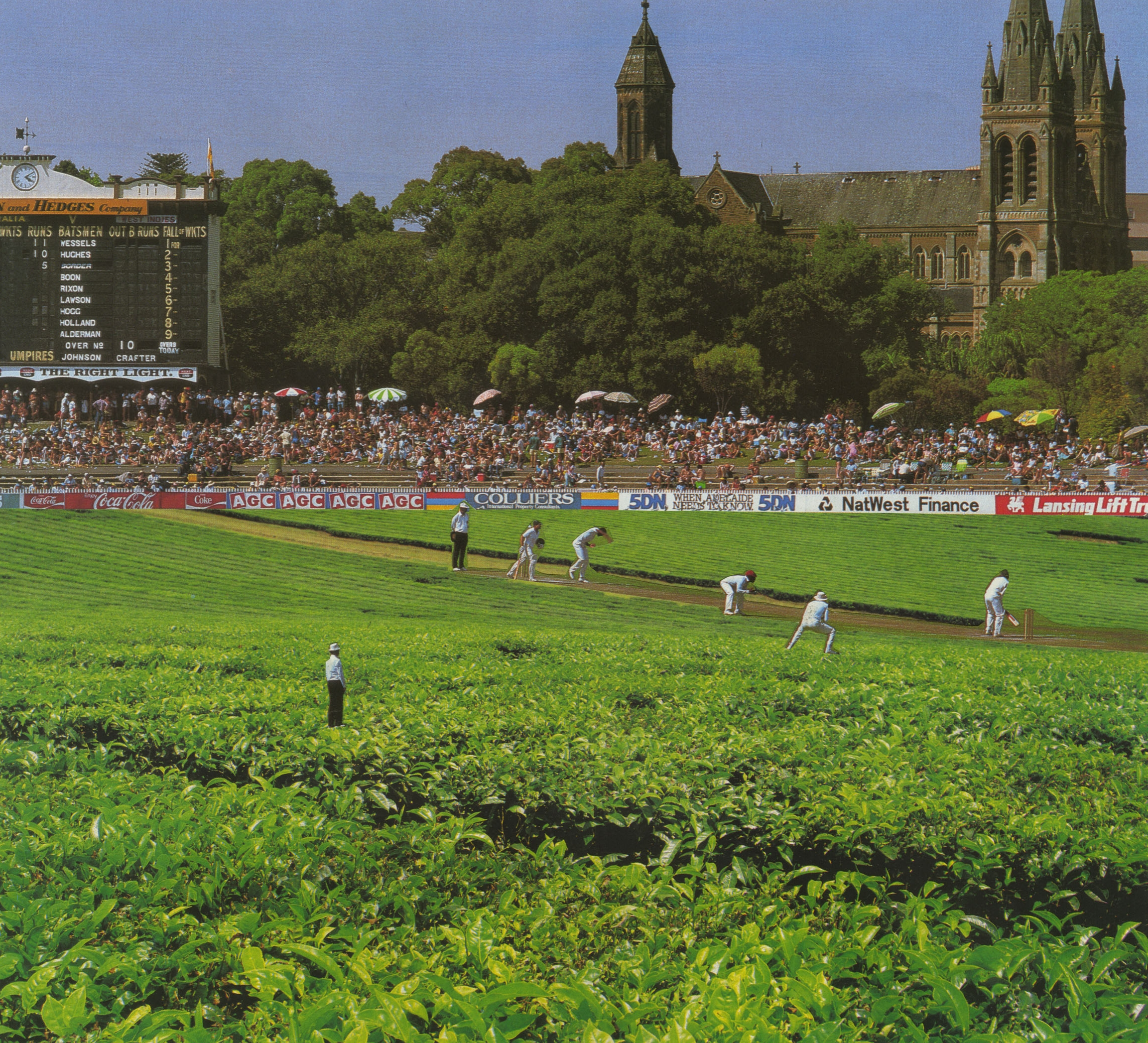 Adelaide Cricket Ground copy.jpg