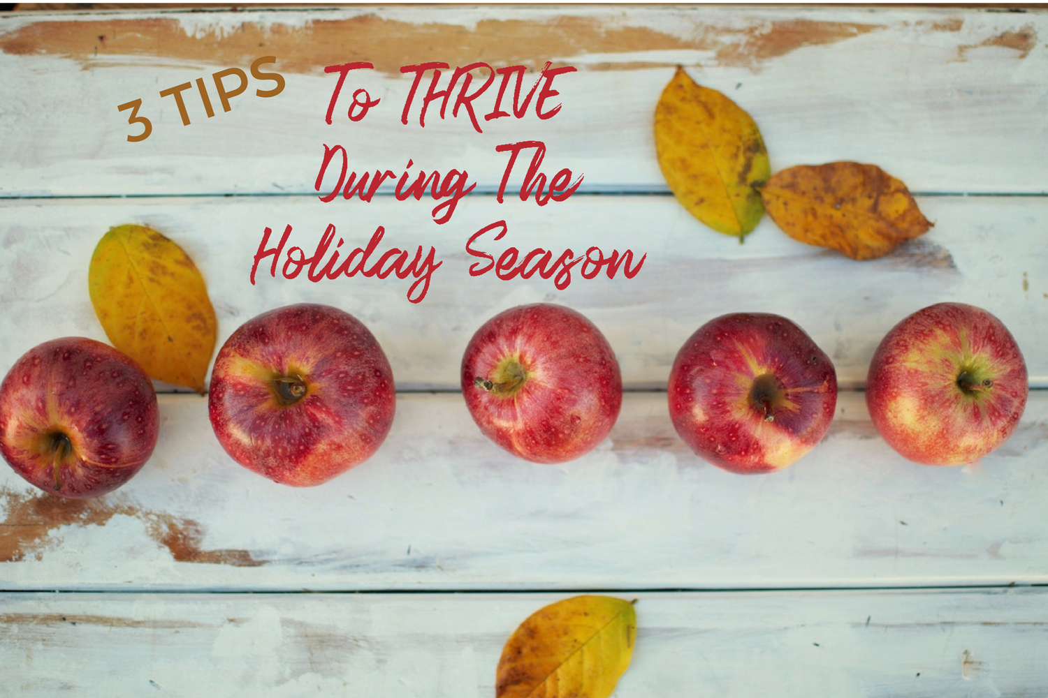 3 TipsTo THRIVE DuringThe Holidays.png