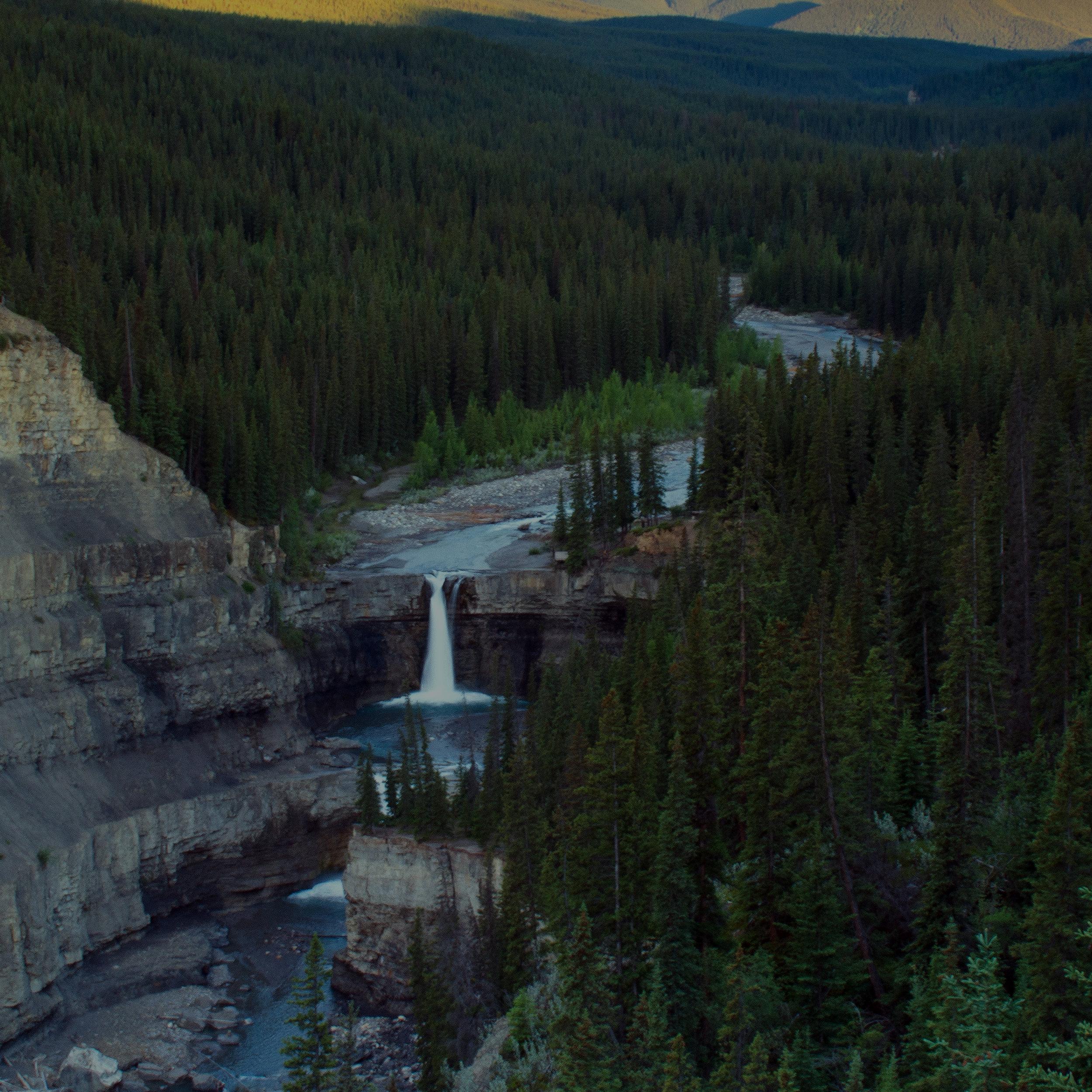 The Bighorn -