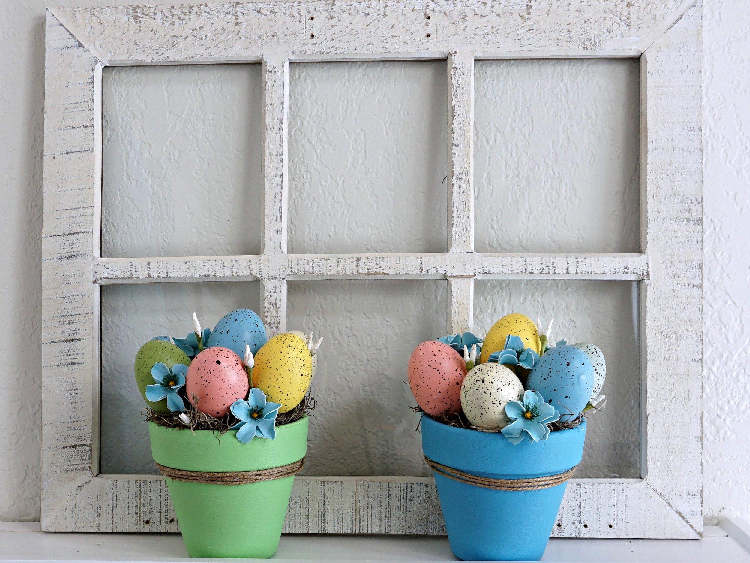 egg plants.jpg