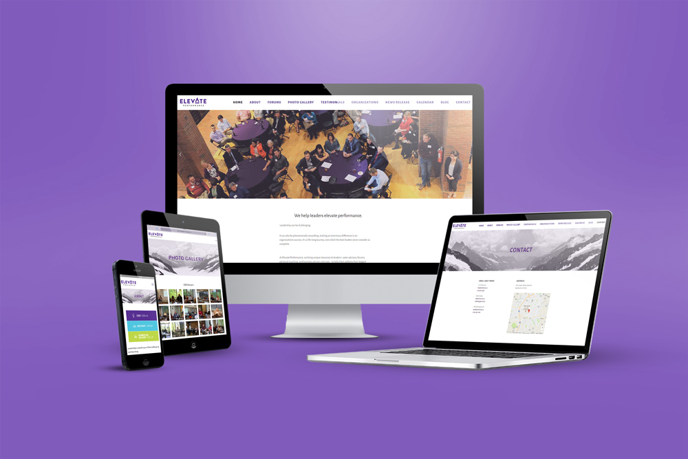 Elevate Performance website