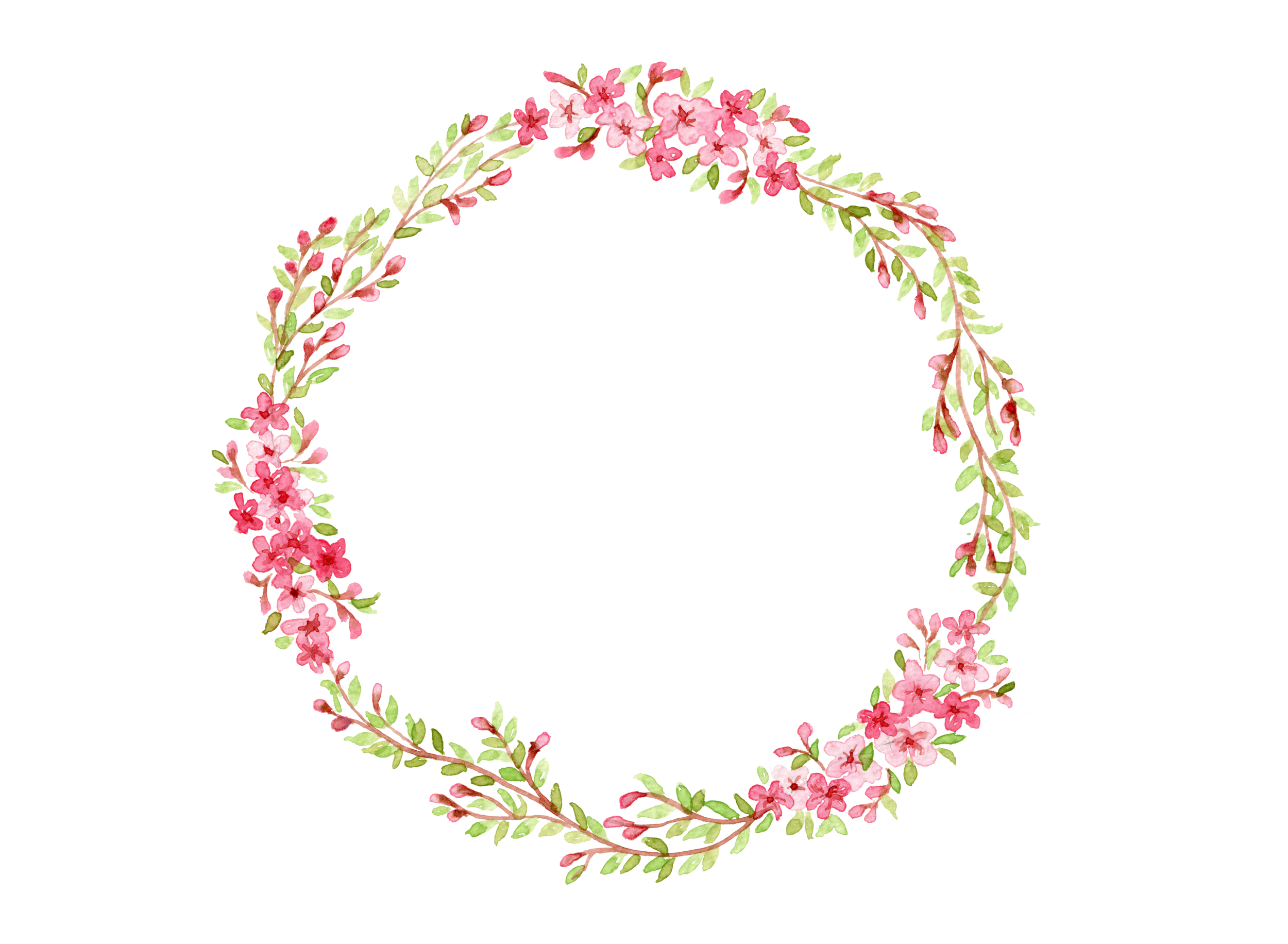 cherry_blossom2.png