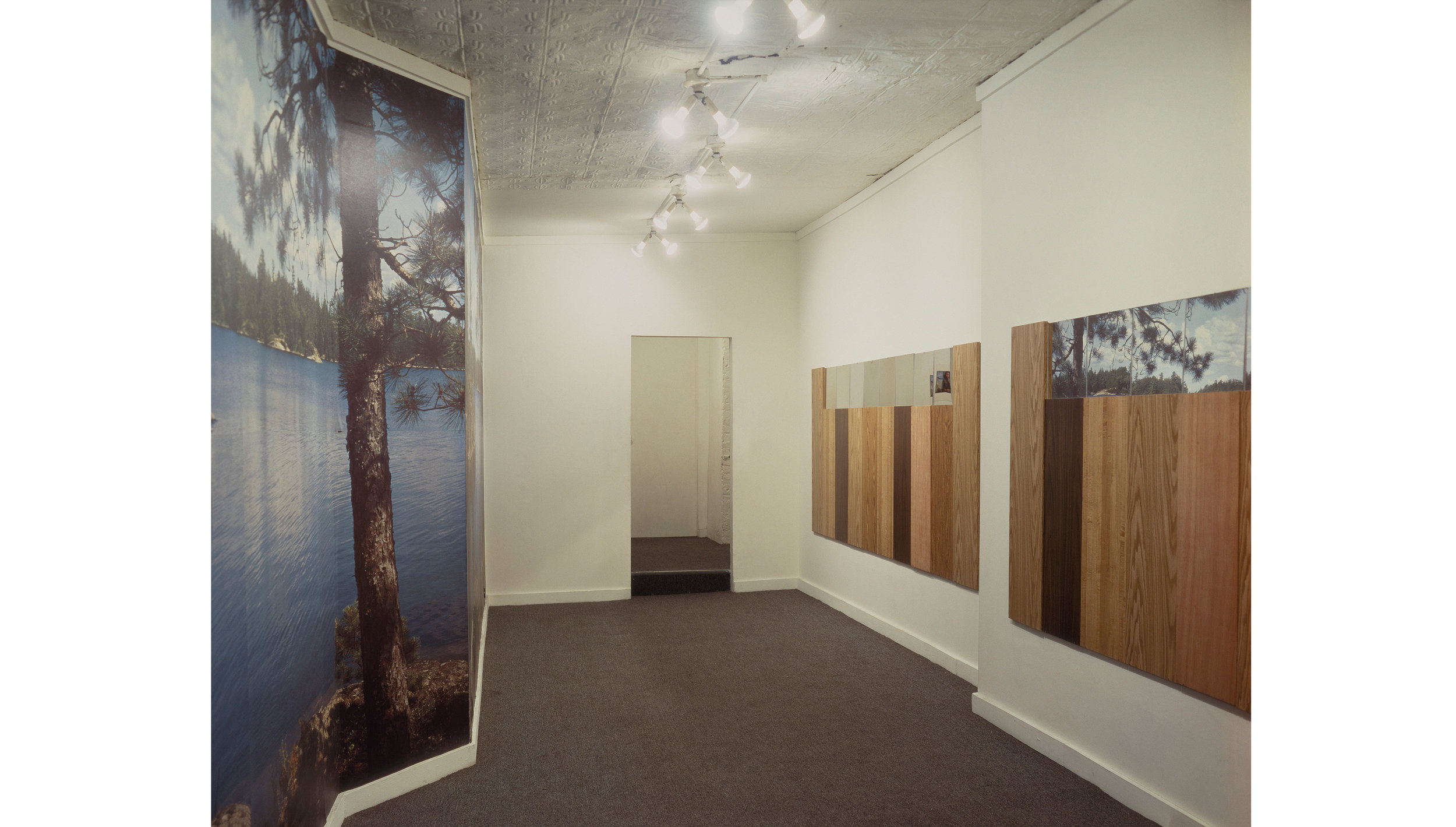 Vikky Alexander, Lake in the Woods, 1986. Installation view, Cash/Newhouse Gallery, New York.