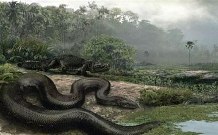 giant-snake.jpg