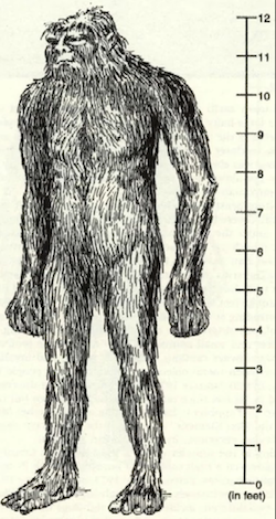 Illustration of the Tano Giant