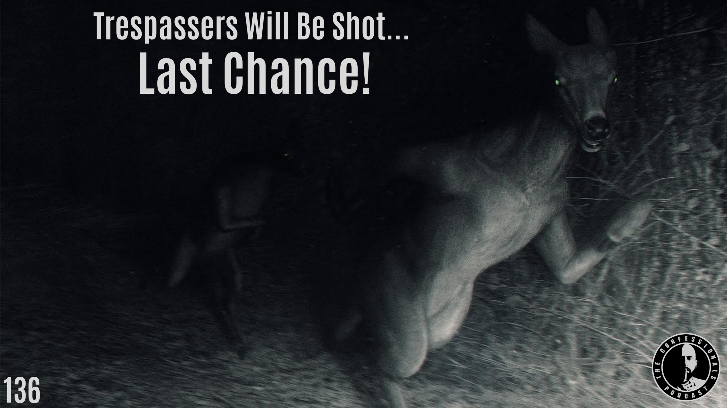 Trespassers Will Be Shot....png