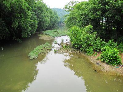 Green_River_in_Kentucky.jpg