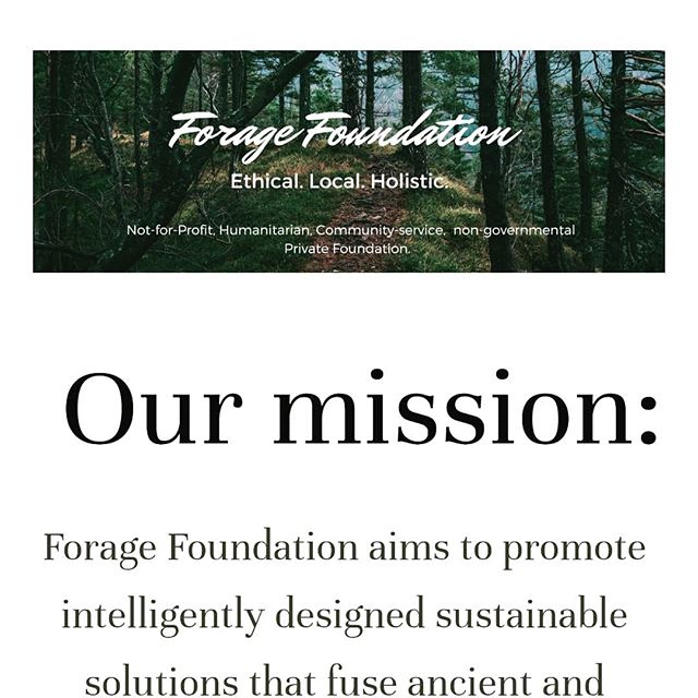 We are so excited to announce our new website! A platform we will continue to develop and expand, sharing our travel stories, workshops and events. You can visit our website at www.foragefoundation.org ✨🙏 #foragetours #foragefoundation #communitystories #newyearkickstart