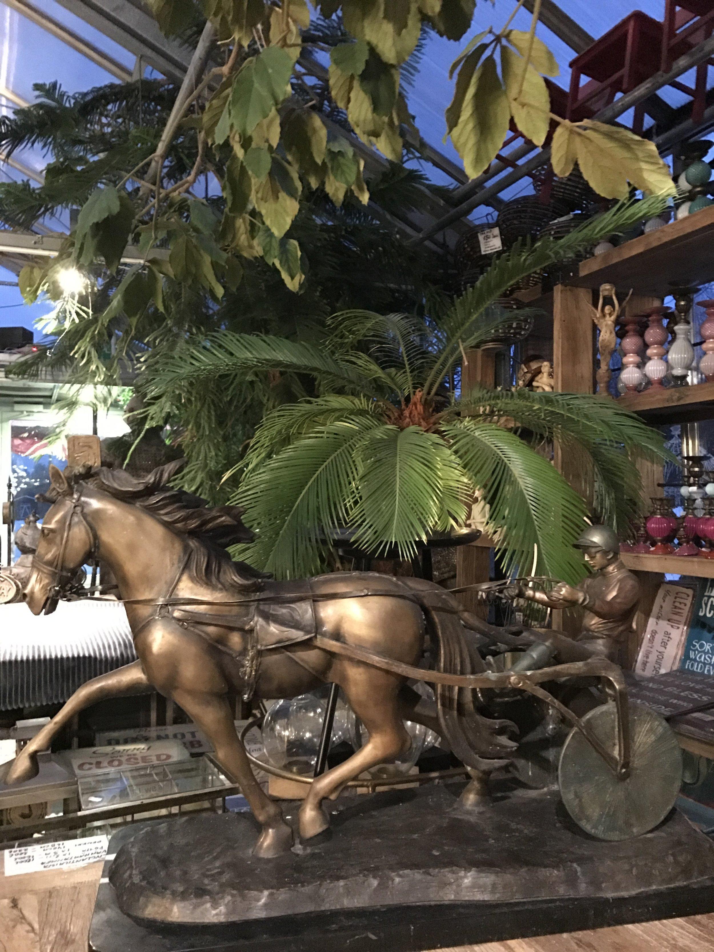 hevonen Frances Boy kuski Johannson