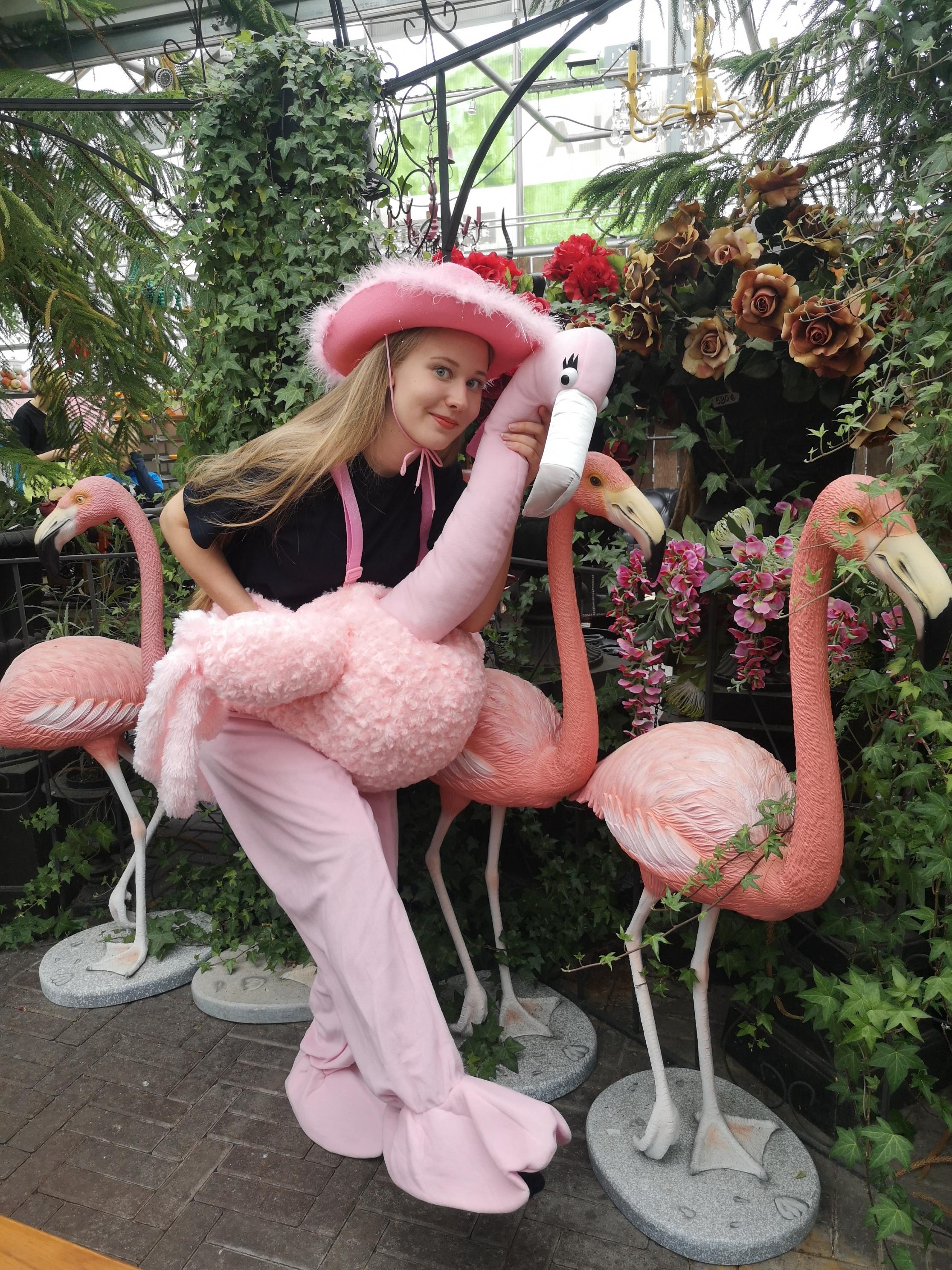 Flamingo-asu  40€