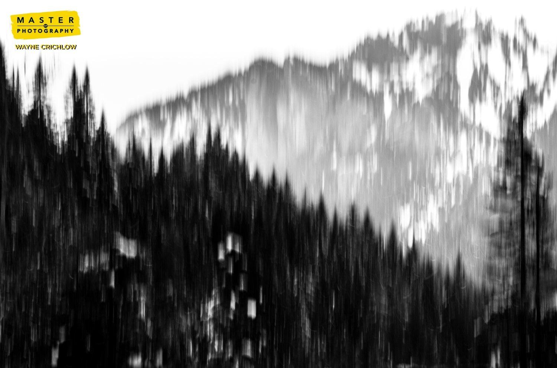 Task 3 - White Landscape
