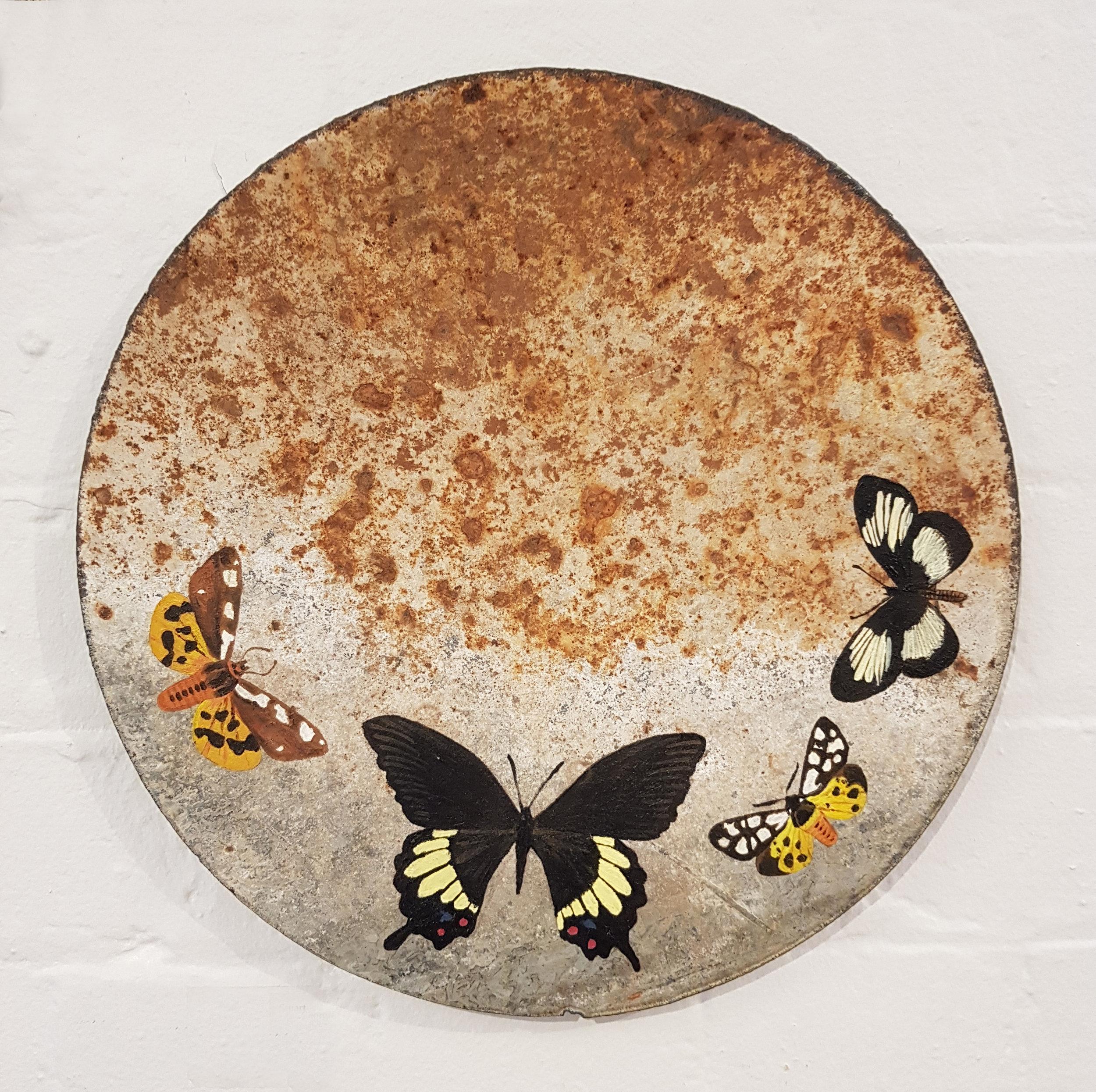 Pictured: Georgina Lee Stuart's  Alight II, acrylic on rusted tin
