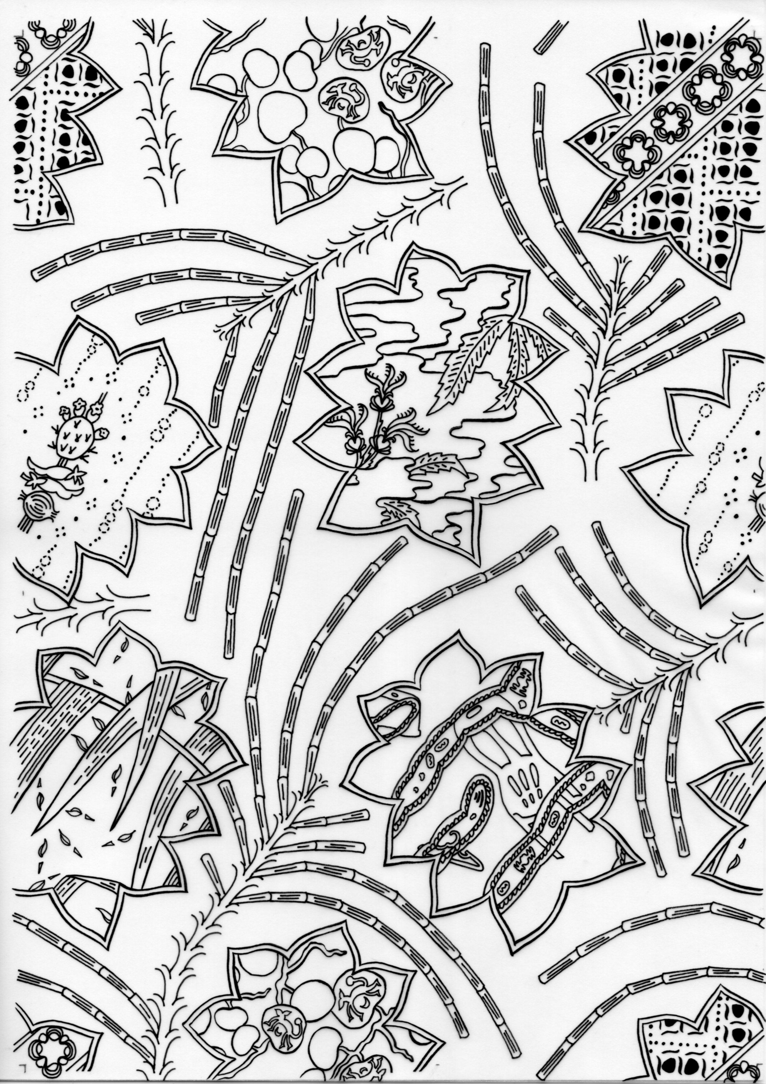Dread Casuarina – Inked Drawings