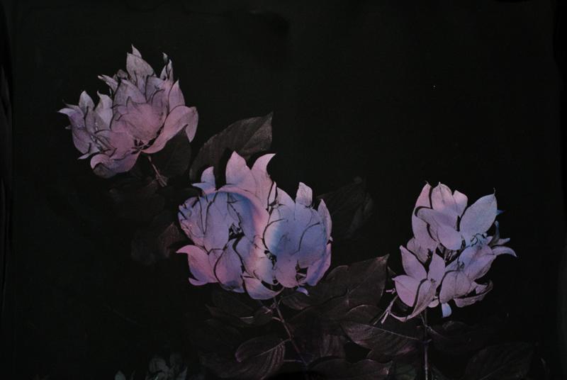Black Varieties #7