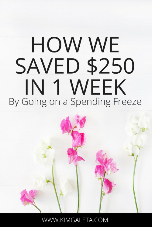 Spending Freeze Challenge_ How We Save $250 in 1 Week-2.png